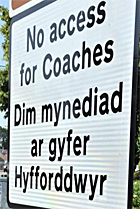wrong coaches sign