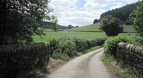 A valley in the Deerfold, Herefordshire